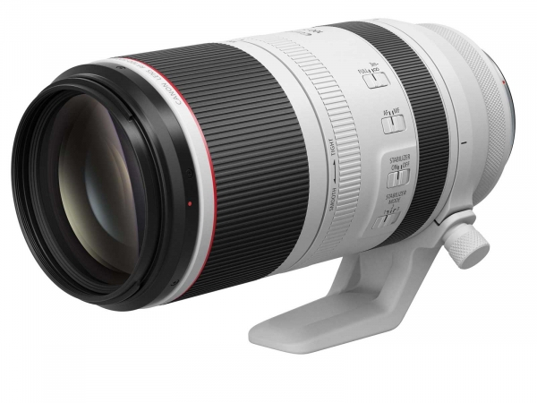 Canon RF 100-500mm F:4.5-7.1 L IS USM